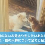犬・猫 火葬